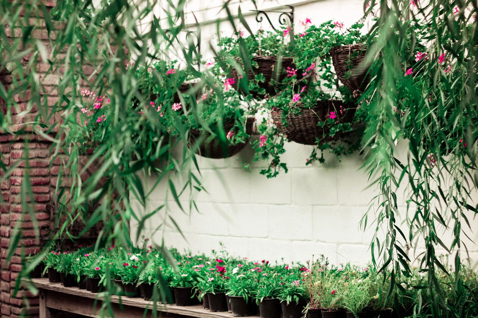Terrace Garden Ideas for Small Houses
